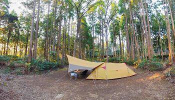 キャンプサイトのテントとタープ